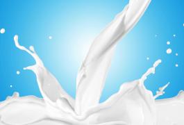 הנחיות- גמישות בדרישות ממחלבות קטנות-כולל חלב בקר וצאן- טיוטה